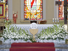 First Holy Communion Church Decoration